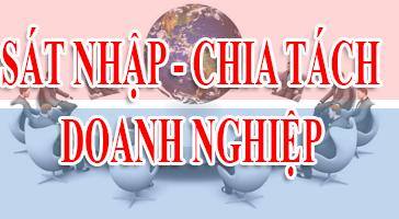 Sáp nhập, hợp nhất công ty tại Đà Nẵng