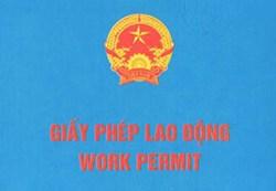 cap-giay-phep-lao-dong-cho-nguoi-nuoc-ngoai-lam-viec-tai-viet-nam-23345