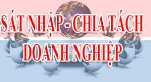 Tư vấn sáp nhập công ty TNHH vào công ty cổ phần tại Đà Nẵng